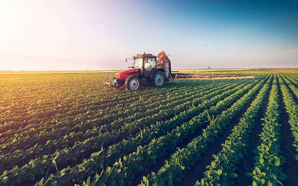 Estudo de professor da FGV EPGE analisa os benefícios ambientais e econômicos na área agropecuária