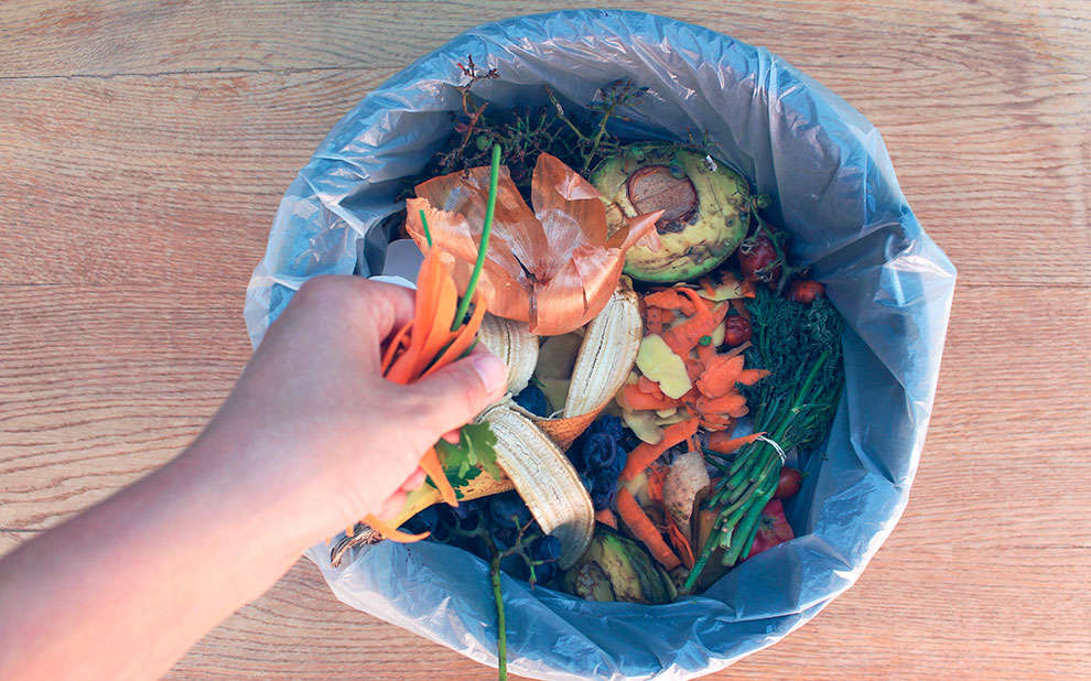 Fórum debate os desafios em operações sustentáveis para combater o desperdício de alimentos